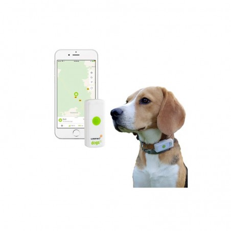 Collier gps pour chien weenect dogs2