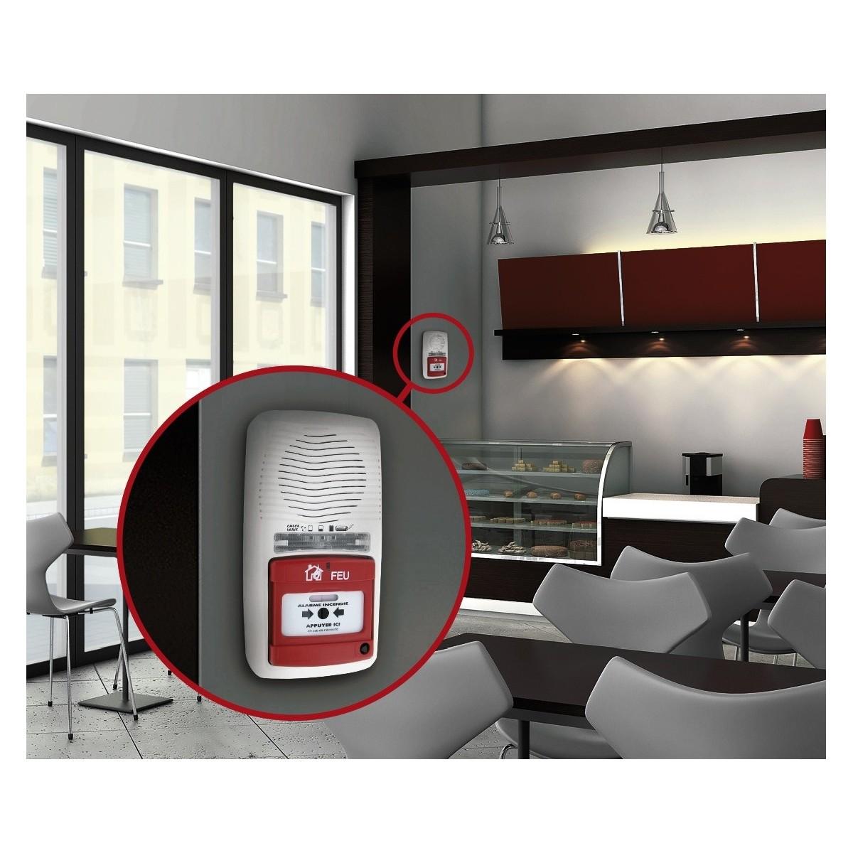 alarme incendie de type 4 lifebox lifebox. Black Bedroom Furniture Sets. Home Design Ideas